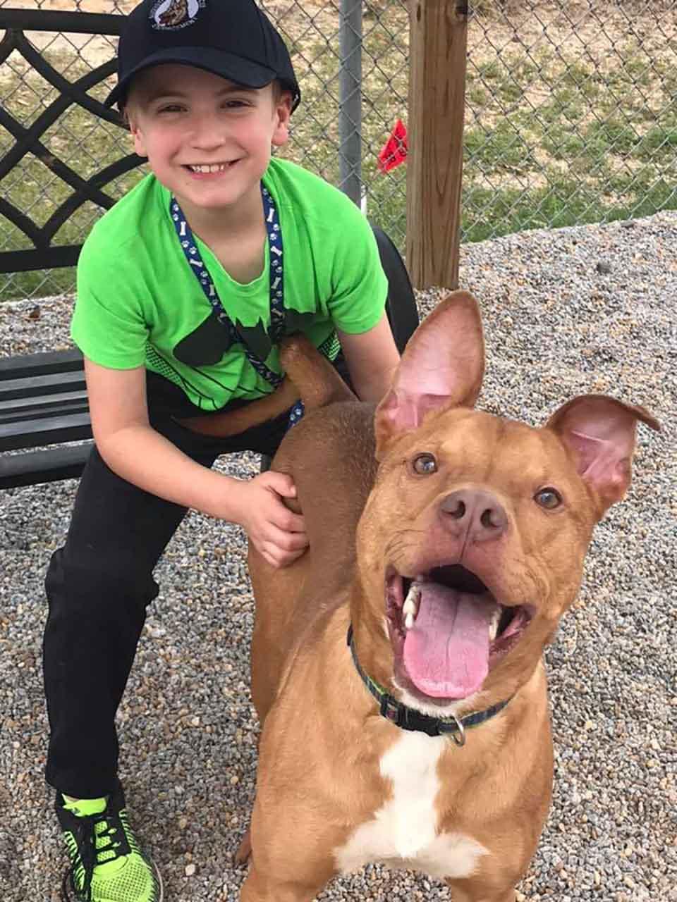 Niño rescata animales y ellos son felices