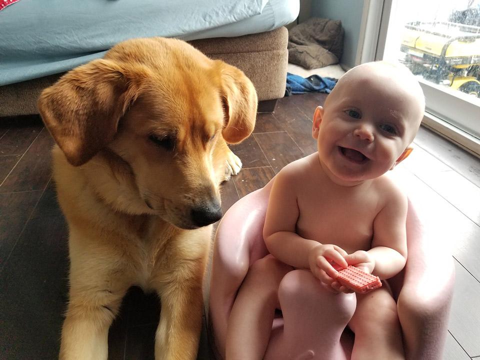 Brick y el bebé
