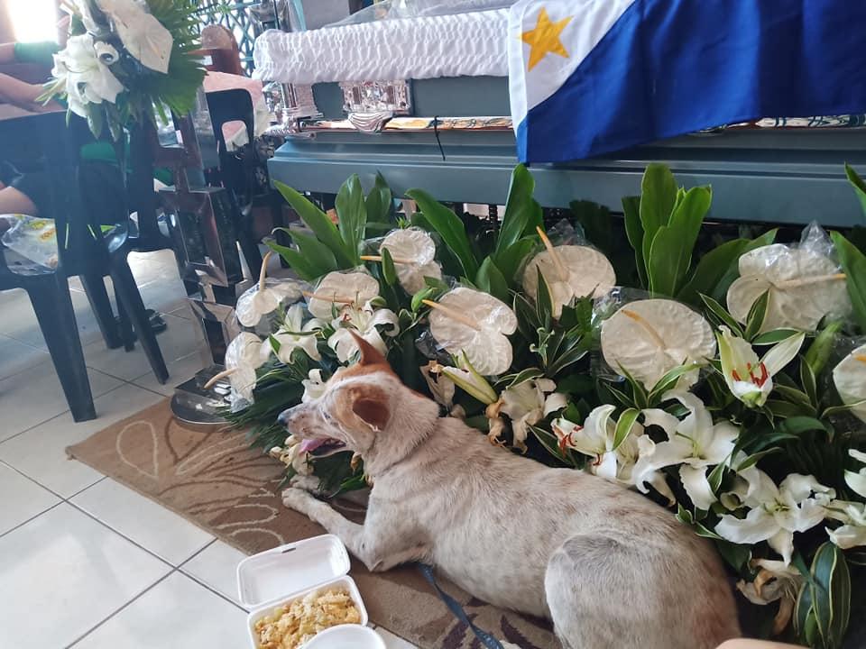 Buboy esperando a Marcelo