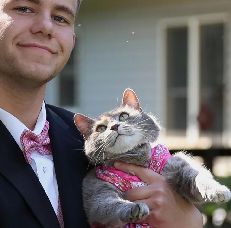 Chico y su gatita van a baile
