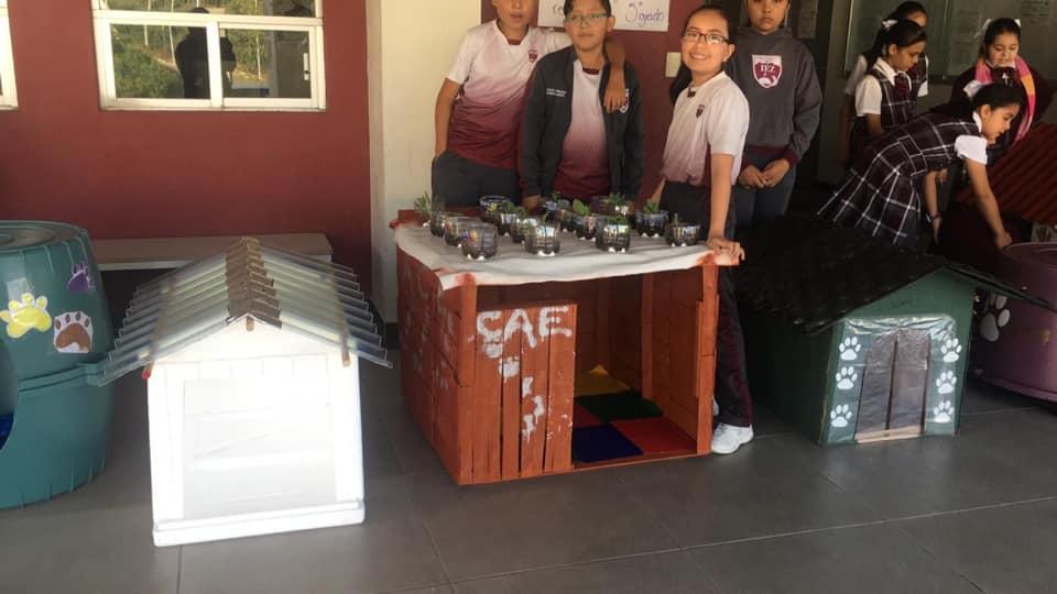 Instituto Educativo de Zacatecas