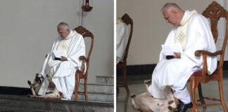 Perro interrumpe la misa y el sacerdote tiene la mejor reacción