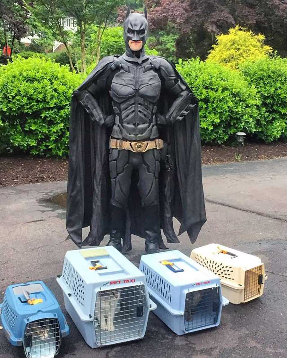 Batman transporta animales