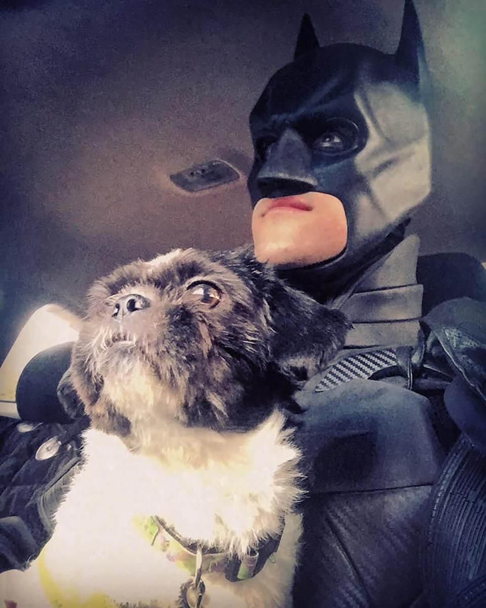 Batman y perro
