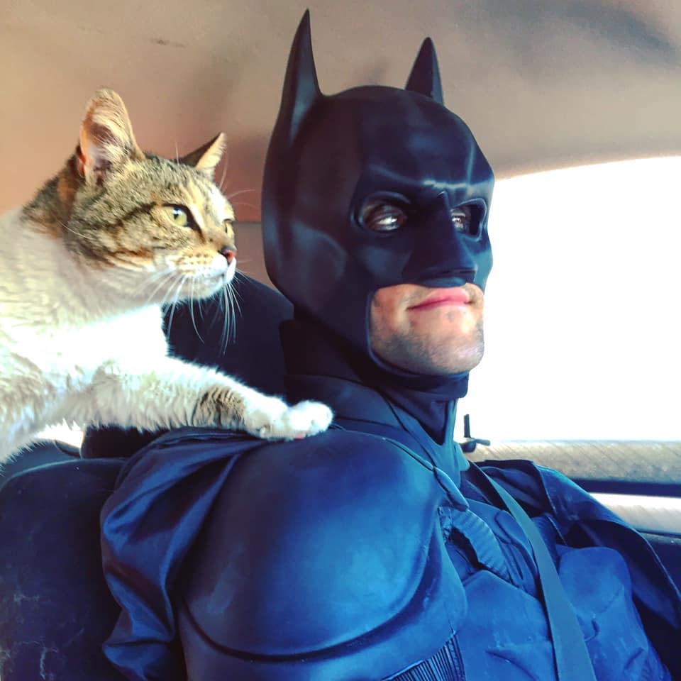 Gato y batman