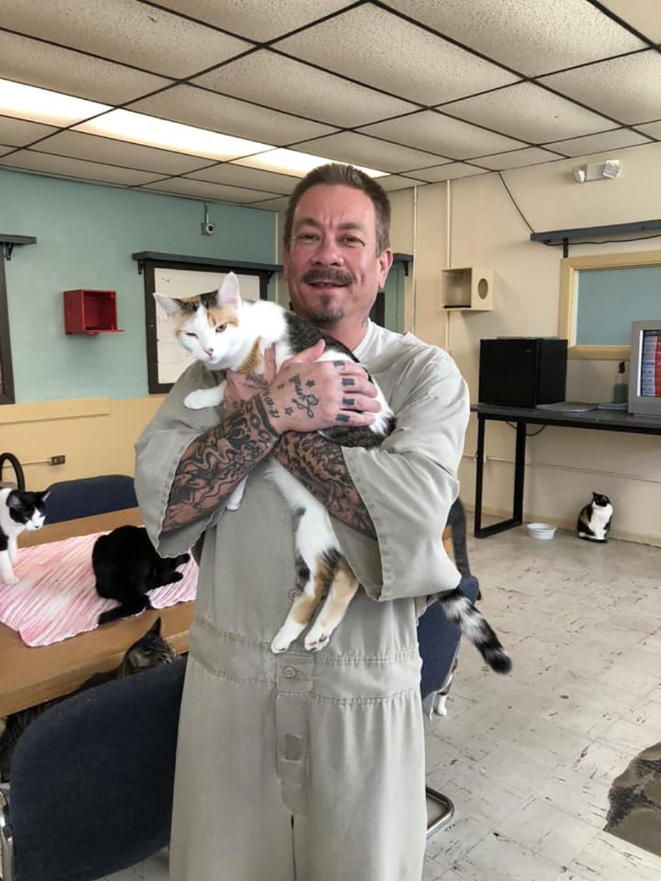 Hombre abraza a gato