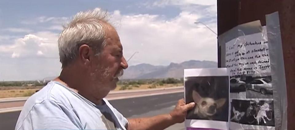 Hombre busca a su perrita perdida