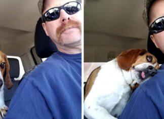 Hombre rescata a perrito que iba a ser sacrificado y recibe un gran abrazo
