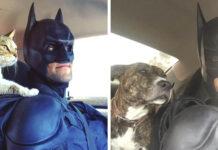 Hombre usa disfraz de Batman para salvar la vida de muchos animales