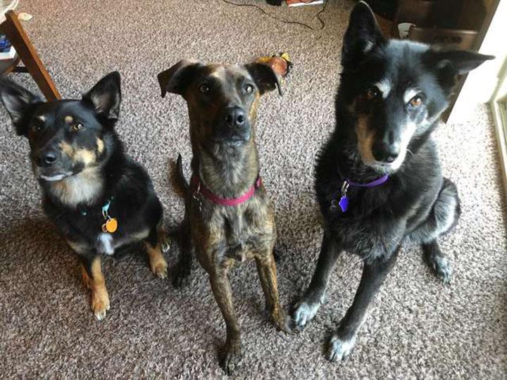 Kairi y sus hermanos