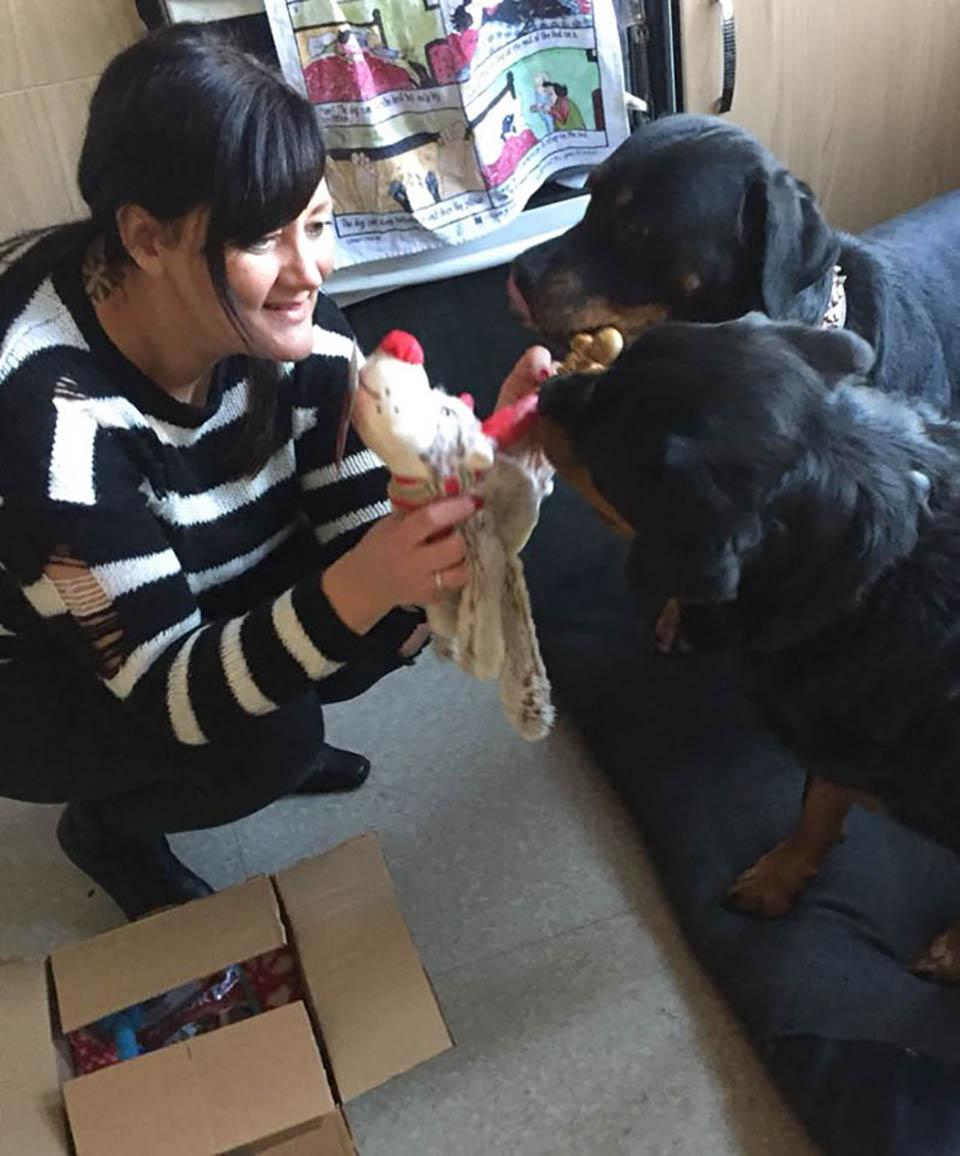 Mujer brinda cuidados a perritos