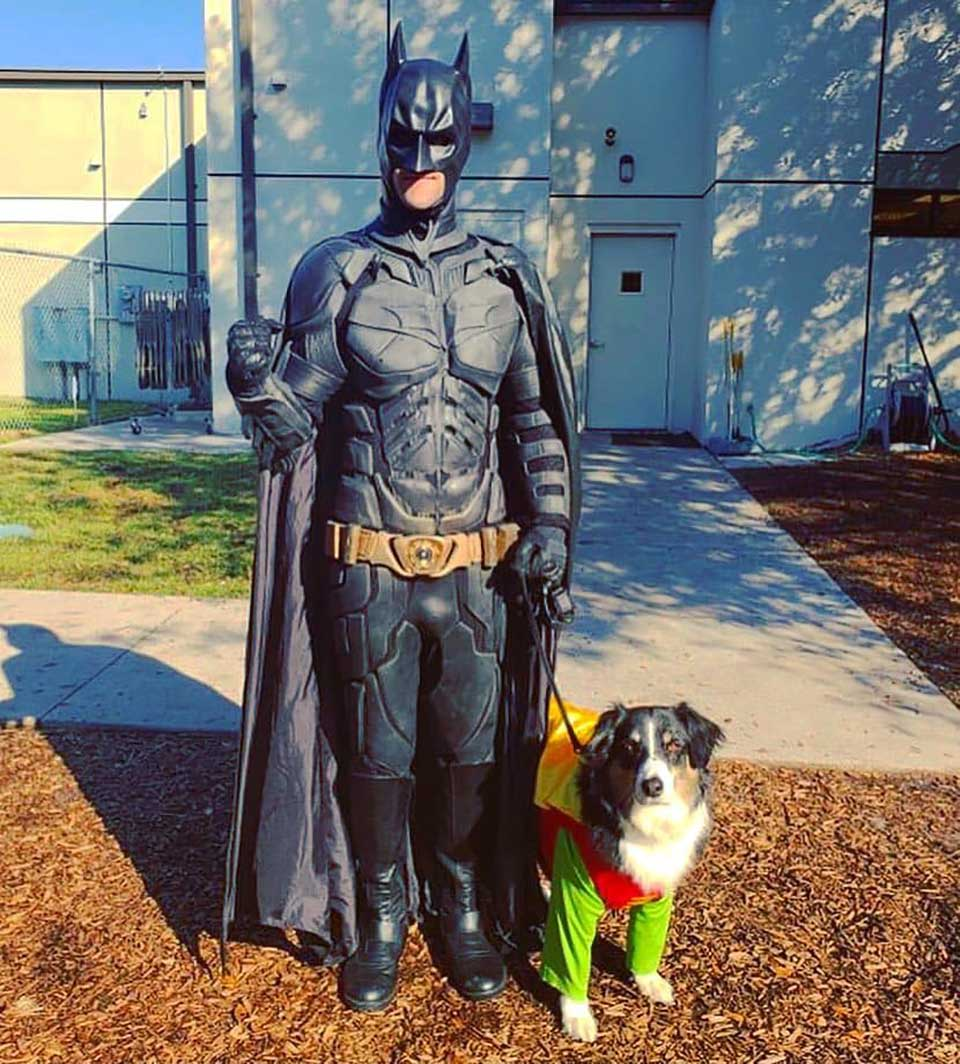 Perro y batman