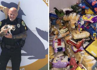 Policía permite pagar multas con donaciones de alimento para gatos