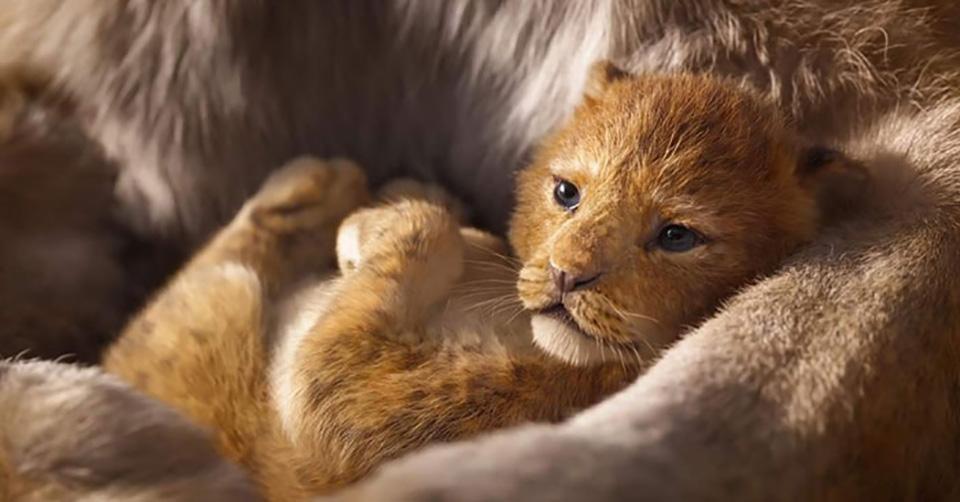 Simba en brazos de su madre