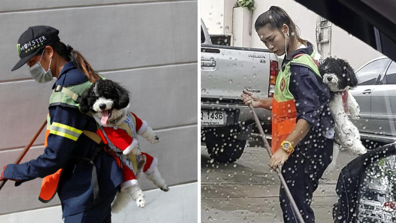 Resultado de imagen para la barrendera que lleva a su perrito todos los dias