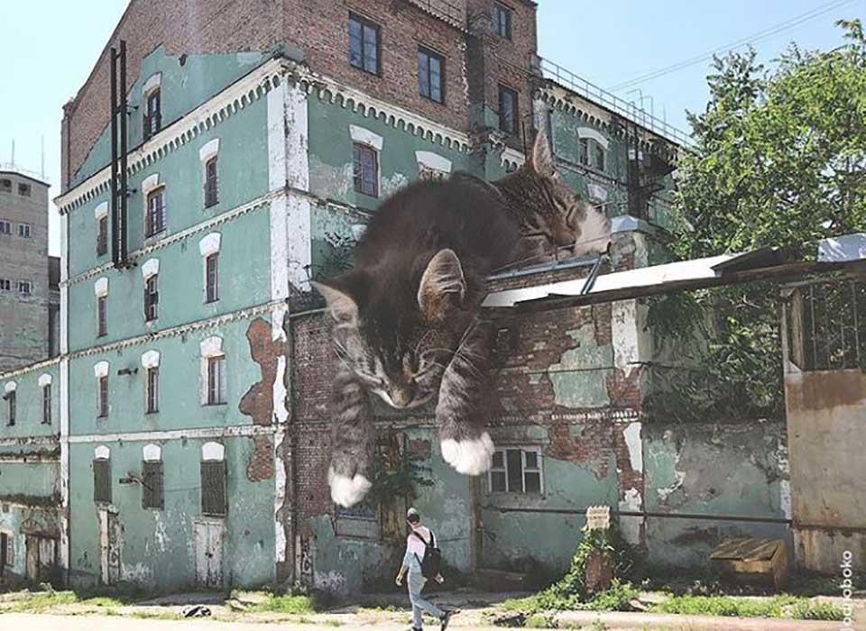 Gatos gigantes en el techo