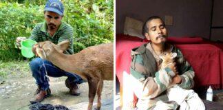 Hombre ha rescatado mas 5000 animales trabajando durante 12 años