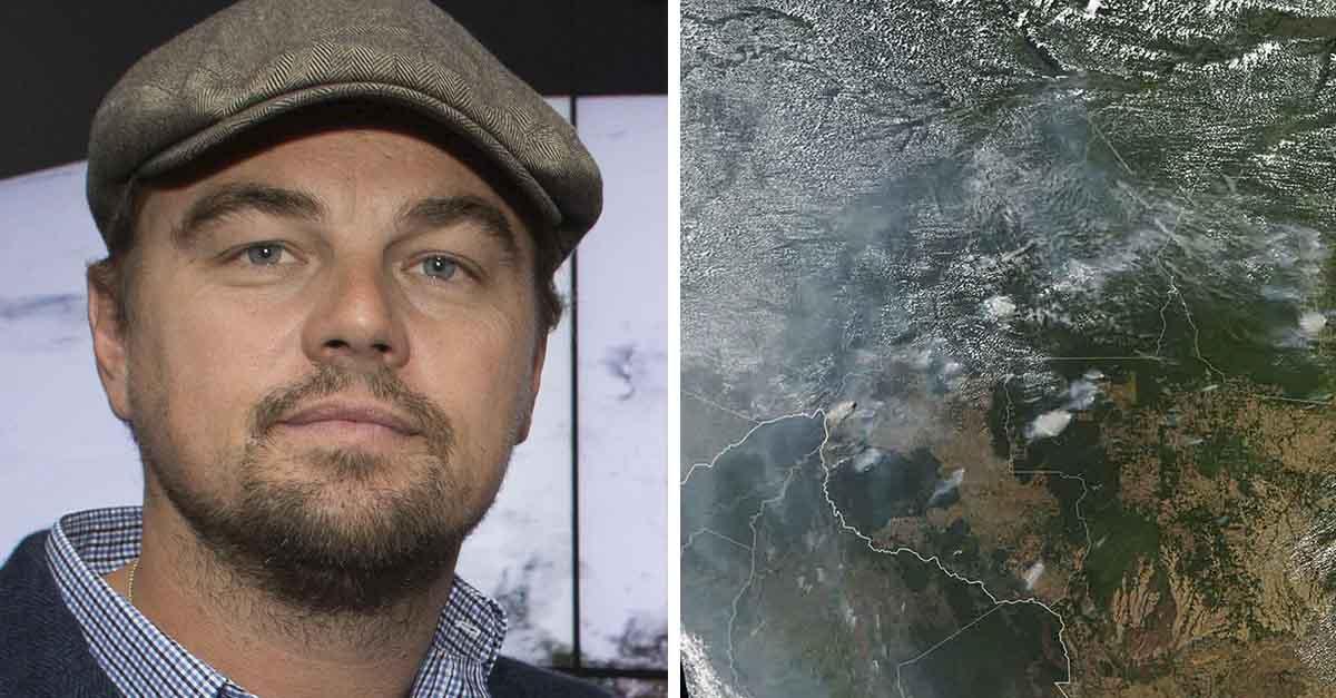 Leonardo DiCaprio dona $5 millones para ayudar a la selva amazónica