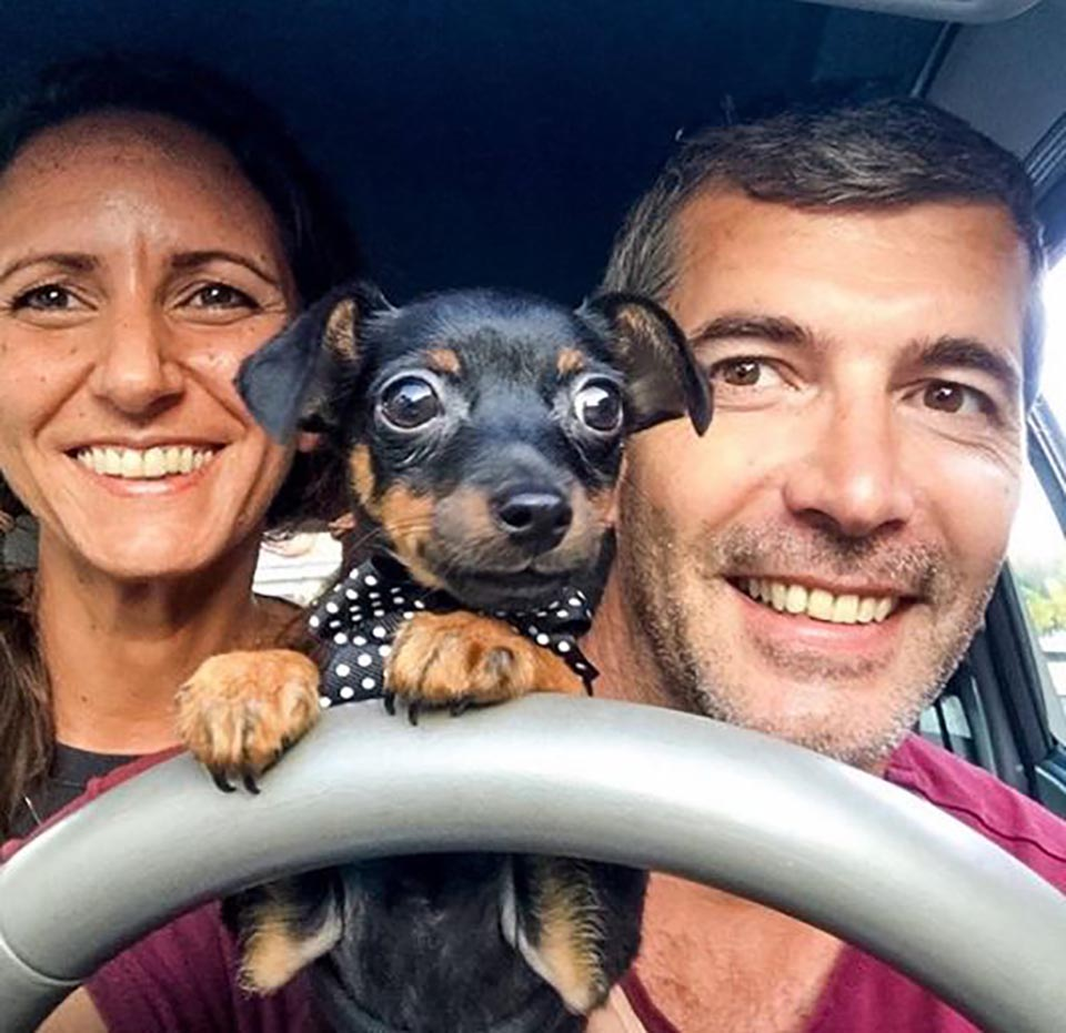 Perro con sus padres en el auto