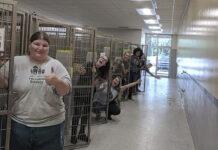 Comunidad brinda hogares de acogidas a perros del refugio