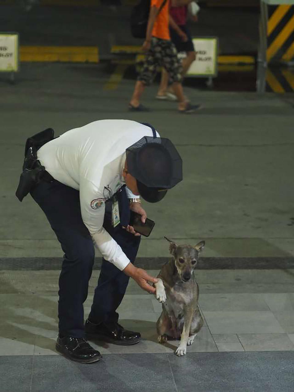 Guardia de seguridad y perrita de la calle