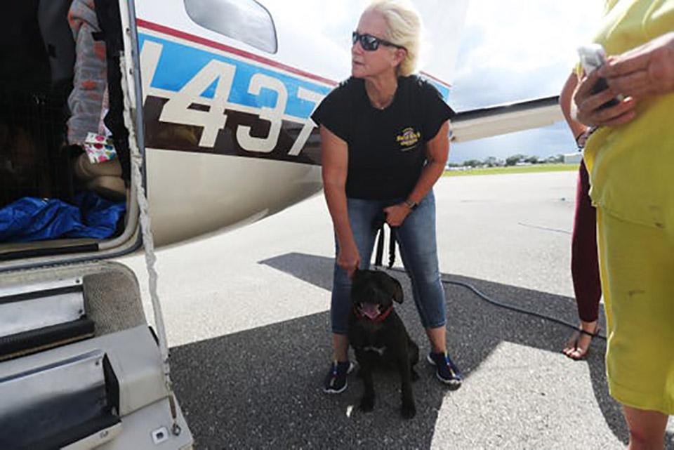 Mujer sostiene a perrito