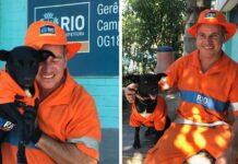 Adorable perrito uniformado acompaña a su padre en el trabajo