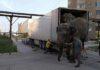 Elefantes en Rusia son obligados a viajar 10000 millas para actuar en circo