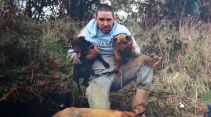 Hombre arrestado después de comprar gatos como cebo vivo