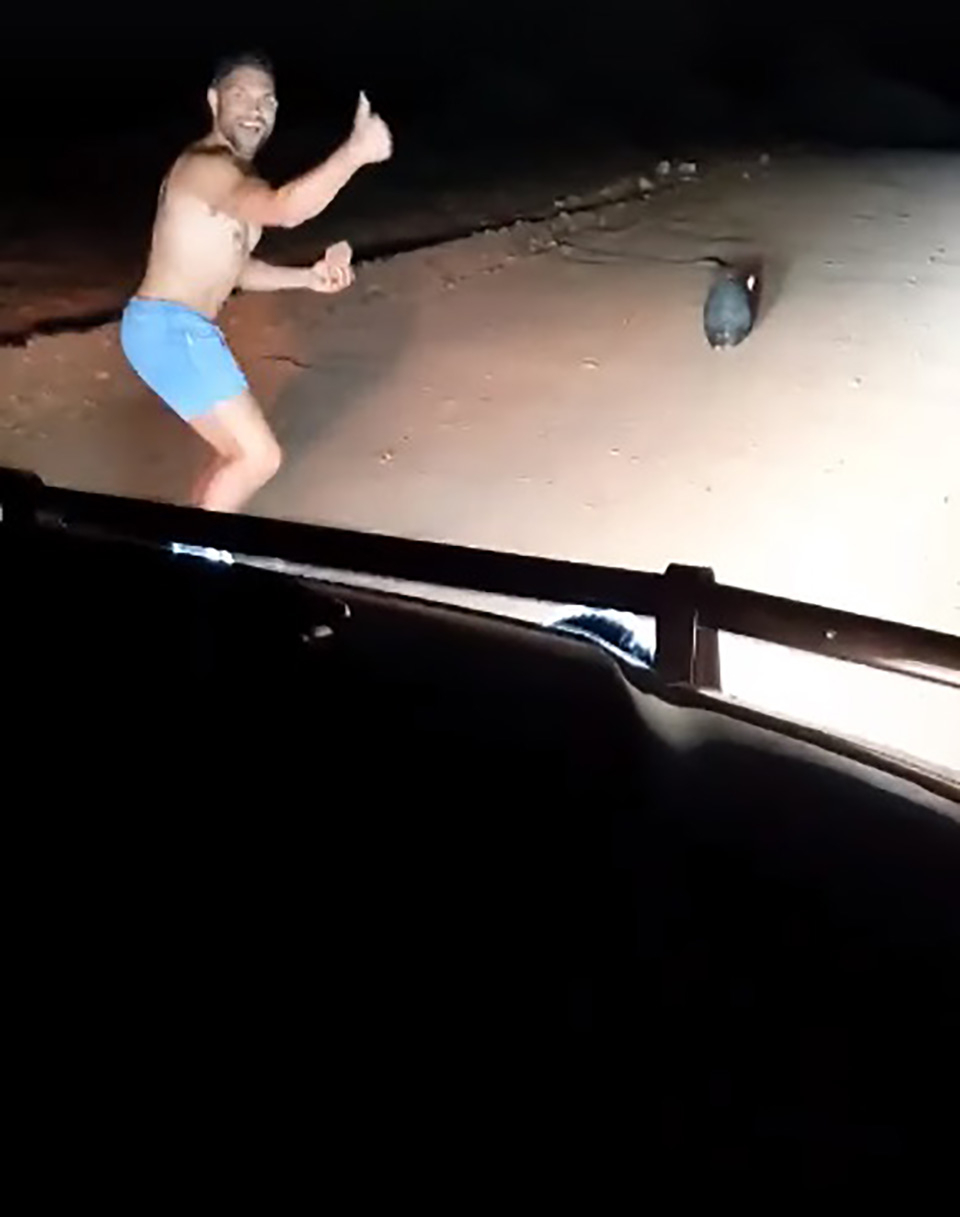 Hombre se divierte al matar a un animal
