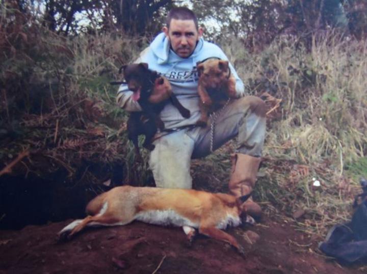 Mark Cuthbert enseñándole a sus perros a cazar