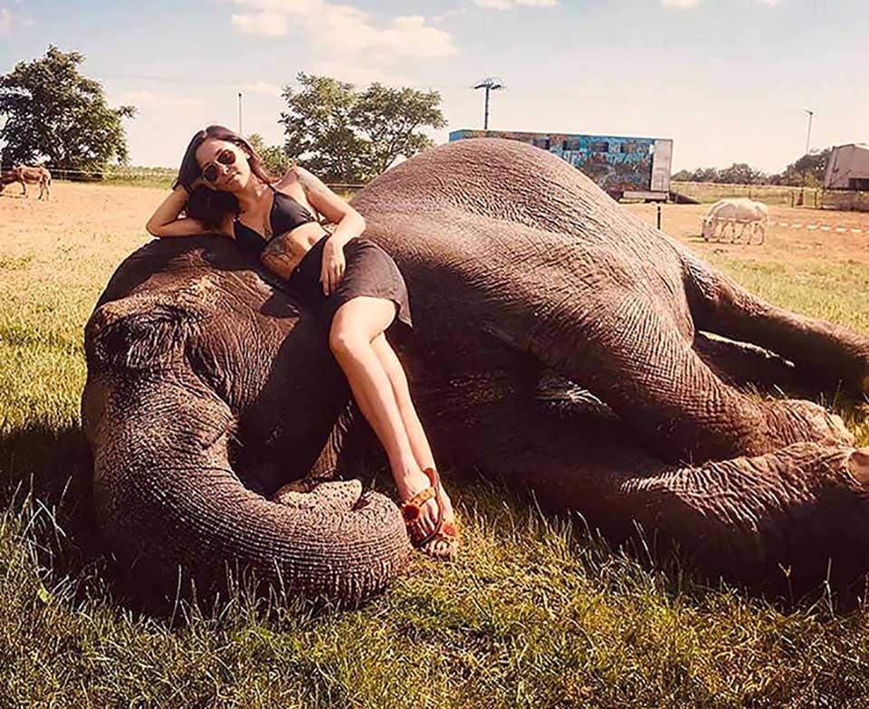 Mujer sobre elefante