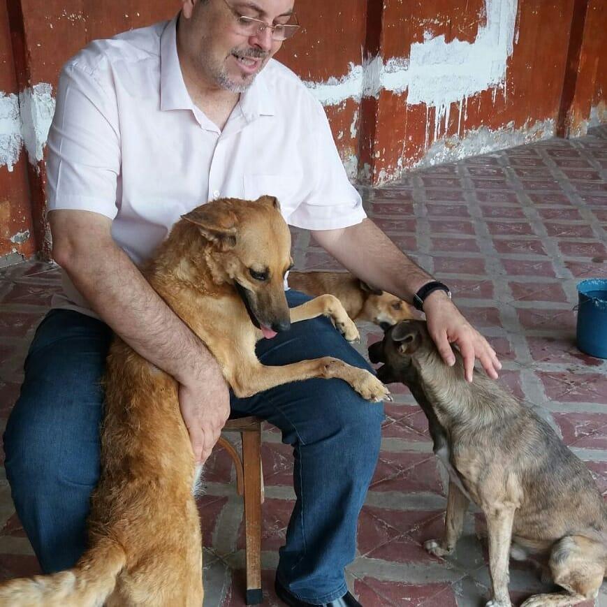 Padre Joao con perros rescatados