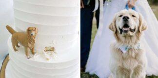 Pareja tiene la mejor temática para su pastel de bodas