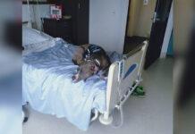 Perro se niega a abandonar a su madre en el hospital
