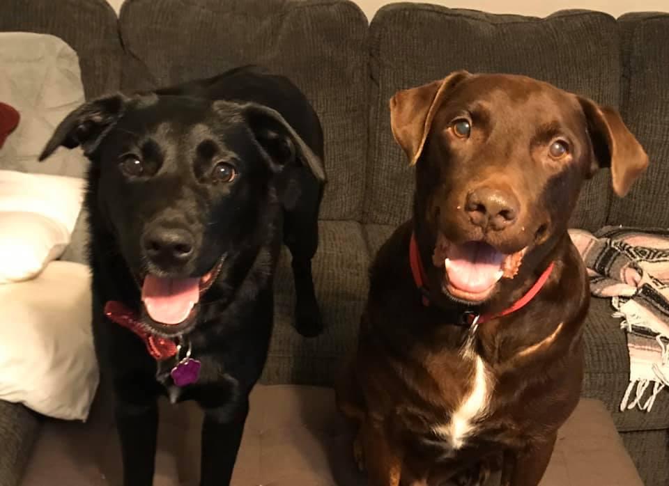 Caleb y su nueva hermana