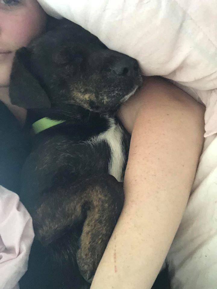 Charisma duerme con mamá
