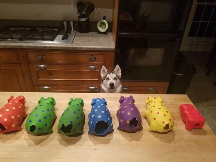 Diesel y sus juguetes