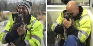 Camionero rompe en llanto al reencontrarse con su gato perdido