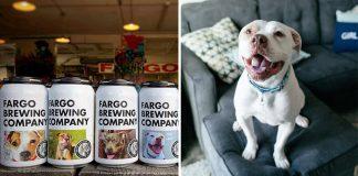 Compañía cervecera pone fotos de perros en adopción en sus latas