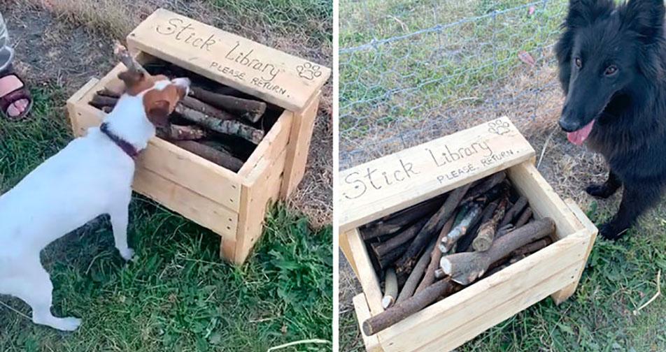 Hombre crea biblioteca de palitos para los perros del parque