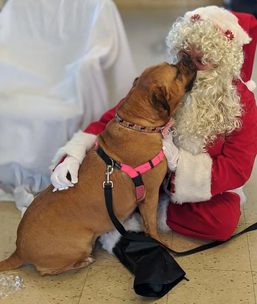 Lucy y Santa