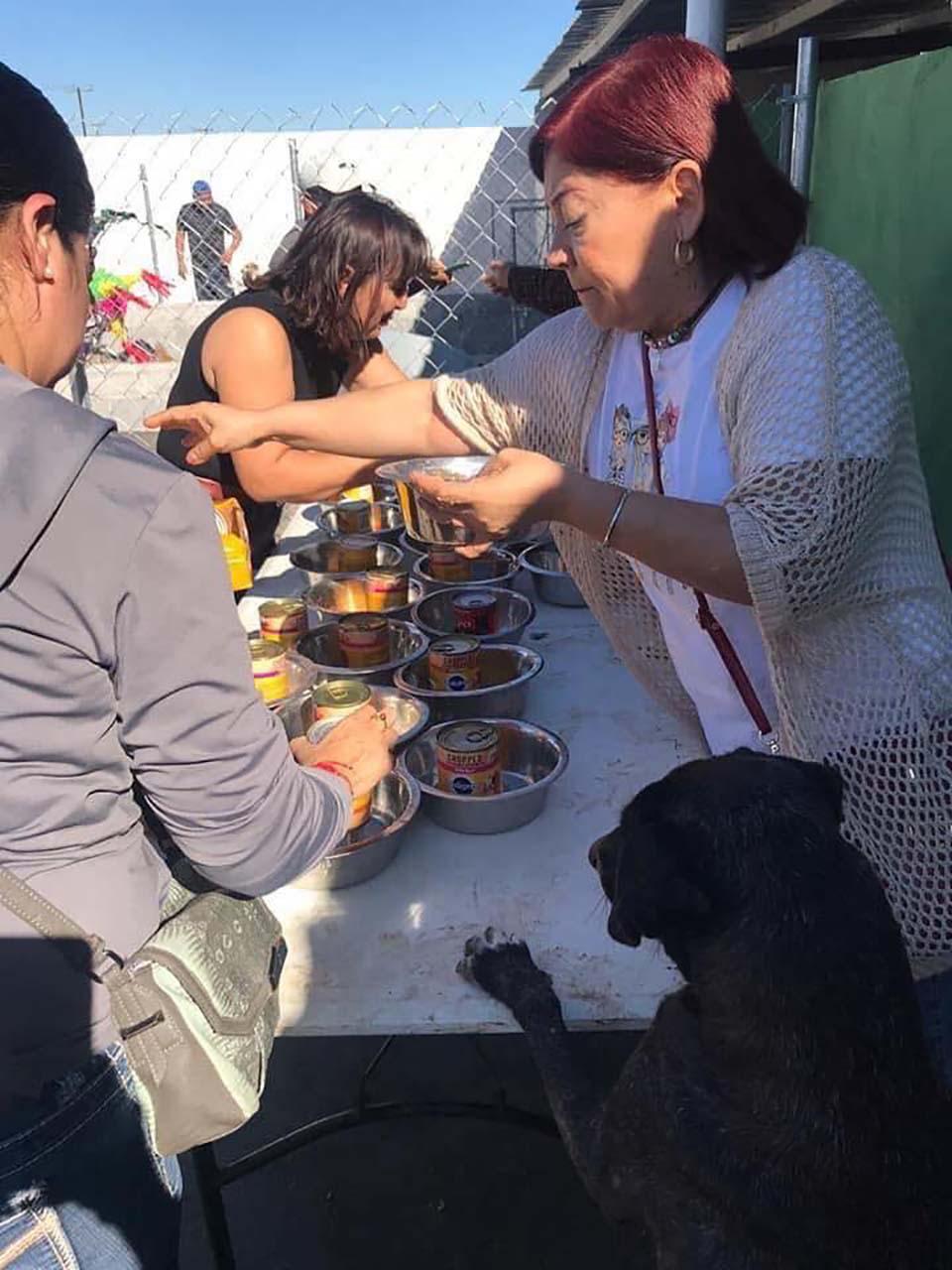 Mujeres sirven las latas de comida para perros