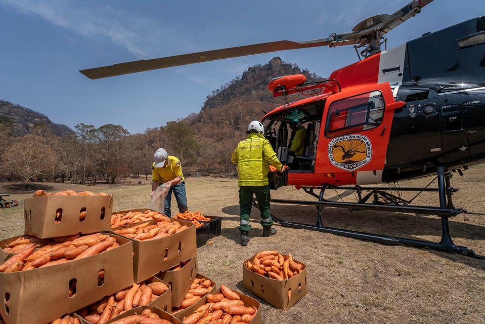 Helicoptero llevando aliementos