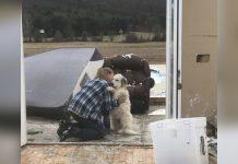 Perro tiene la reunión mas dulce con su familia después de un tornado