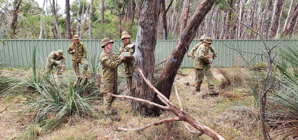 Soldados construyen caminos
