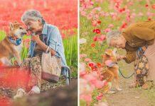 Abuela y su Shiba Inu en adorables fotos