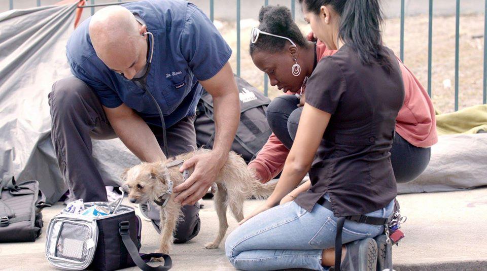 Ayuda a personas sin hogar y sus mascotas
