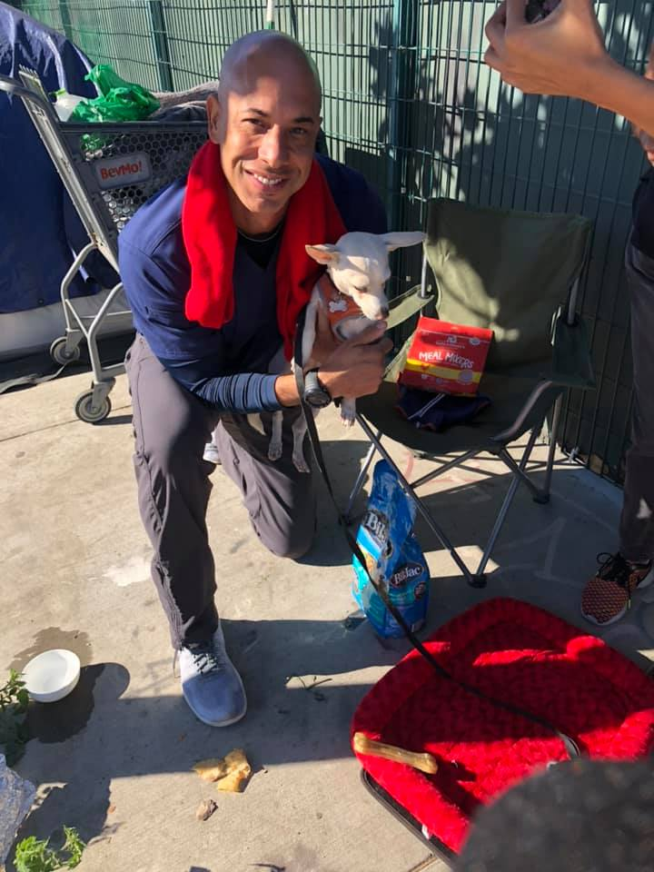Ayuda animales sin hogar