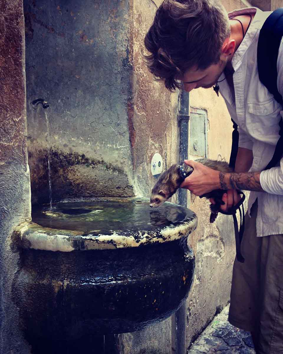 Hombre sostiene a hurón mientras bebe agua